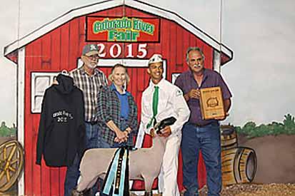 Petersen Club Lambs   Winners