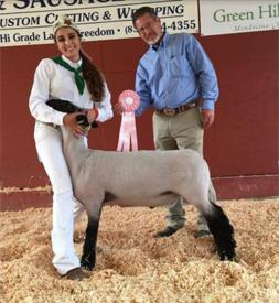 Petersen Club Lambs | Winners